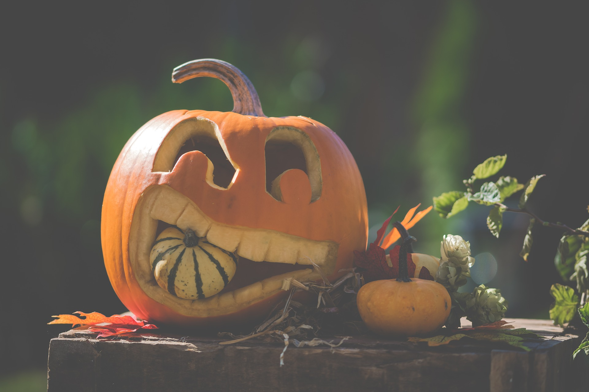 best things to do for halloween break | doolin tourism | co. clare